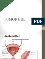 CA BULI-dr sulaiman.pptx
