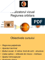 analizatorul-vizual