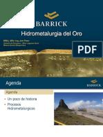 Hidrometalurgia del Oro 2013- Ponencia JPezo.pdf