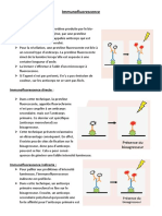 Immuno Fluorescence