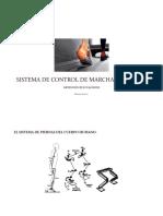 Exposición-sistema de Control de Marcha y Postura