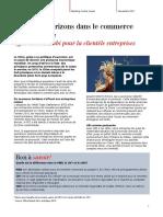 Factsheet Rmb Cic Fr