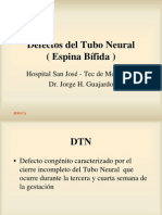 Defec Tubo Neural