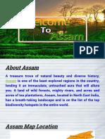 Assam PPT