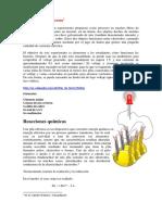 aaa013.pdf