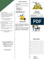 triptico aev pdf