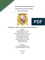 Informe Final Pec