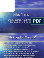 Milieu Therapy