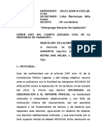 Apelacion Ante El Organo Judicial 1