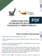 Coescop Normativa Policial-1 (4)