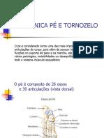 tornozelo-e-pé-Cópia.pdf