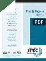 Plan de Negocios Efectivo 2013