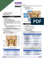 NEUR-S01-T05-Hypothalamus.pdf
