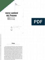 Teoría General del Proceso - Ferreyra de de la Rúa - Tomo I.pdf