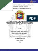 hedatidosis humana.pdf