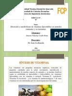 Absorcion y Metabolismo de Vitaminas Liposolubles en Animales Rumiantes y No Rumiantes (1) (1)