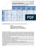 Estructura Gramatical Del Idioma Francés