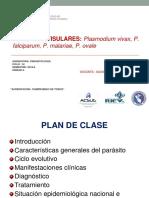 Teoría 7 Plasmodium USMP IIF