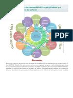 Tema 06 Agrupemos Las Normas ISOIEC Según La Calidad y El Proceso de Desarrollo Del Software
