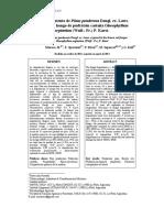 Comportamiento de Pinus ponderosa Dougl. ex. Laws. expuesto al hongo de pudrición castaña Gloeophyllum sepiarium (Wulf.