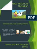 BUENAS PRÁCTICAS PECUARIAS.pptx