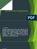 Criminalidad-Organizada