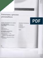 Estructuras y Procesos Psicoanaliticos - Carver & Scheier.pdf