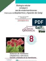 Unidad 4 Endomembranas RER y Golgi