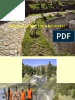 Ecologia e Impacto Ambiental