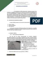 Patologias de Lo Pavimentos Definitivo