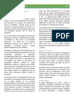 Tema 9 Enfermedad obstructiva crónica PLANTILLA.pdf