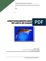 Bio Diag Larvas El Realejo Camaron