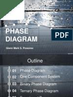Phase Diagram Report
