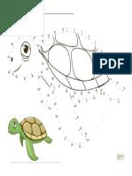 sea turtle kindergarten exercise