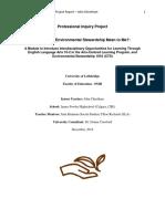 pip report