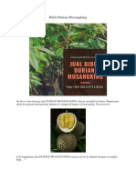 SPESIAL..!HP/WA 0813-2711-9234, Harga Bibit Durian Unggul H. Tovix Riau