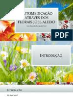 Automedicação Através Dos Florais Joel Aleixo