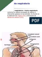 Cardio - Respiratorio 1