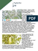 hi tech agri_മണ്ണും വേണ്ട, സൂര്യനും വേണ്ട, കൃഷി ഗോപുരമുകളിൽ.pdf
