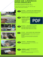 Montagem de Lâminas - Infográfico.pdf