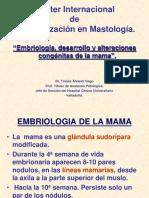 Embriología Desarrollo y Alteraciones Congénitas de La Mama