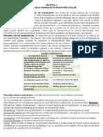 DOC-20180318-WA0026(1) (1)