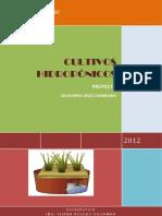 2010541787_2205_2012F_MAT230_Proyecto_de_Cultivos_Hidroponicos_1.docx