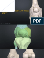Structure and Biomechanics of Knee Joint