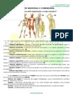 1 - Ficha Informativa - Saude Individual e Comunitária (1).pdf
