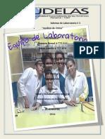 laboratorio_de_la_orina.pdf