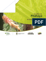 Cartilla Pitahaya ICA