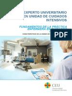 Fundamentos practica enfermera uci