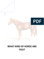 What Kind of Horse Are You