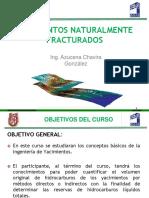 1er Parcial Yacimientos Naturalmente Fracturados